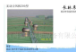 供应长林东500型无动力屋顶排风机,广西广东无动力风机风帽
